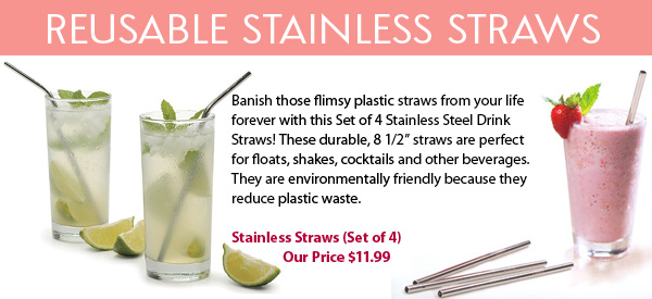 Reusable Stainless Straws