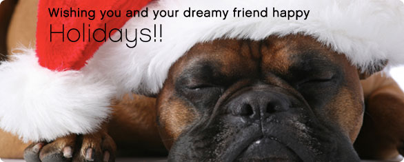 Wishes of sweet dreams to our best friends